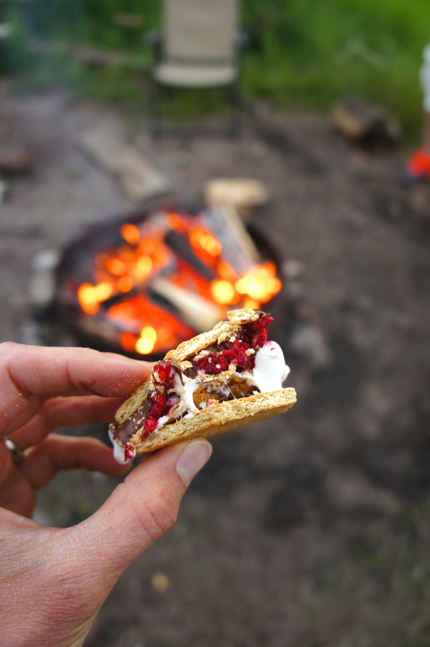 Raspberry Nutella S'mores Repeat + Summer Vacation