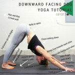 Downward Facing Dog Tutorial
